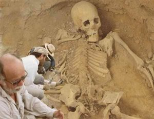 eveil tv - squelette géant