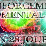 PROGRAMME DE RENFORCEMENT MENTAL EN 28 JOURS