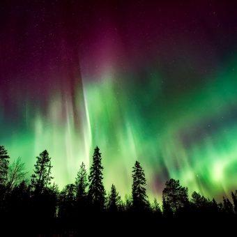 Le Langage de la Vibration Cosmique