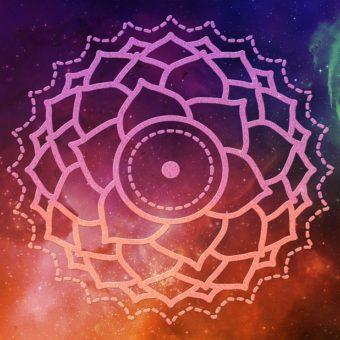 Les Huiles Essentielles liées au Chakra du troisième oeil
