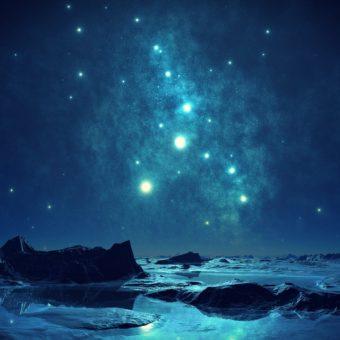 Découvrez ce que l'arbre de votre signe astrologique druides Celtes révèle sur vous