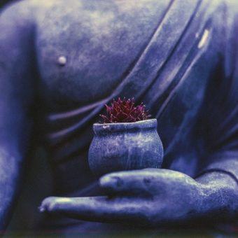 Pourquoi la spiritualité s'invite dans notre vie ?