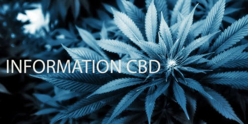 information cbd