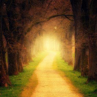 Le chemin que nous suivons dans l'après-vie est déterminé par nos croyances
