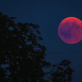 Les effets des Eclipses Lunaires et solaires sur votre Signe du Zodiaque
