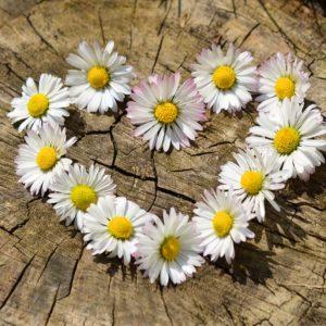La Joie du Coeur n'est pas un paradigme existentiel