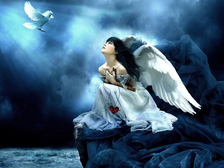 Quelles sont les caractéristiques des Anges terrestres ?