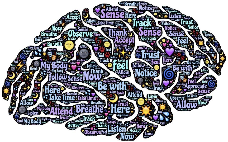 Conscience et cerveau