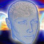 Une étude révèle que l'activité du cerveau continue après la mort