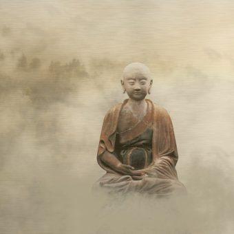 Bouddha – témoin de la souffrance