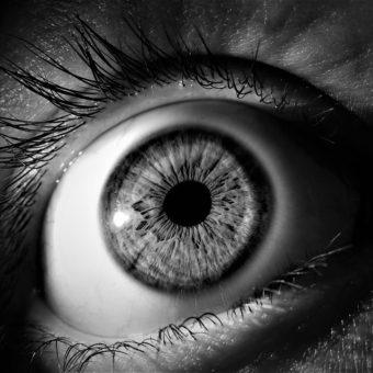 IL EST IMPORTANT DE DIFFÉRENCIER « LE VRAI DU FAUX » FACE AU GRAND ÉVÉNEMENT QU'ON ANNONCE…