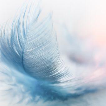 Vous êtes actuellement dans une période de transition entre deux ères – Message canalisé ARCHANGE JOPHIËL
