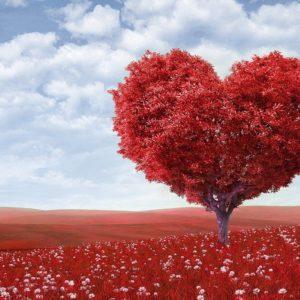 Le vrai nom de l'énergie d'Amour qui émane de votre coeur