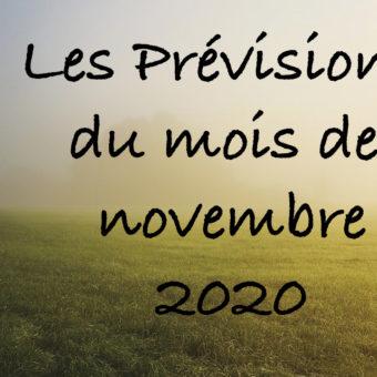Voici les prévisions pour le mois de novembre 2020 - Par Frédérique Shine